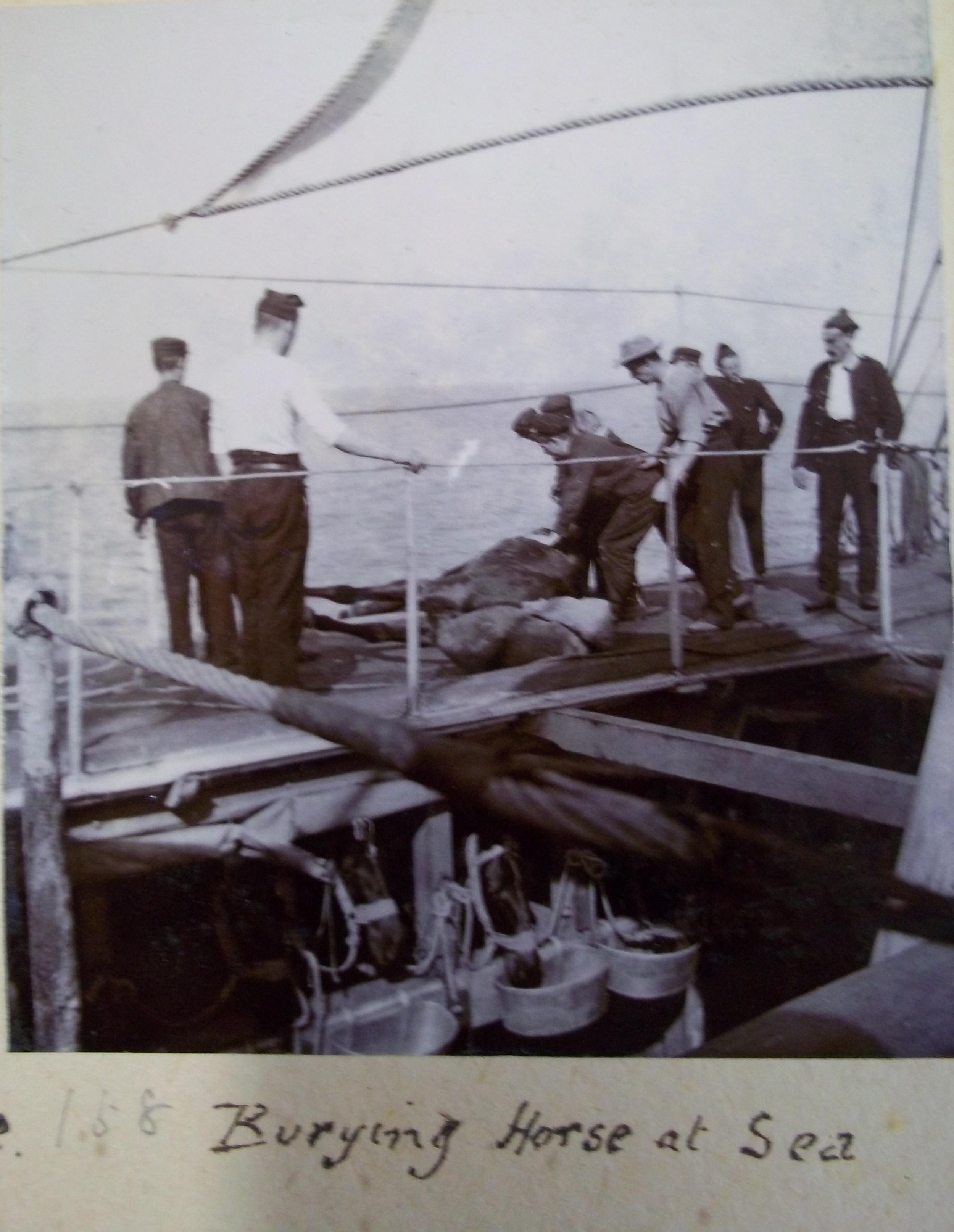Burying a horse at sea