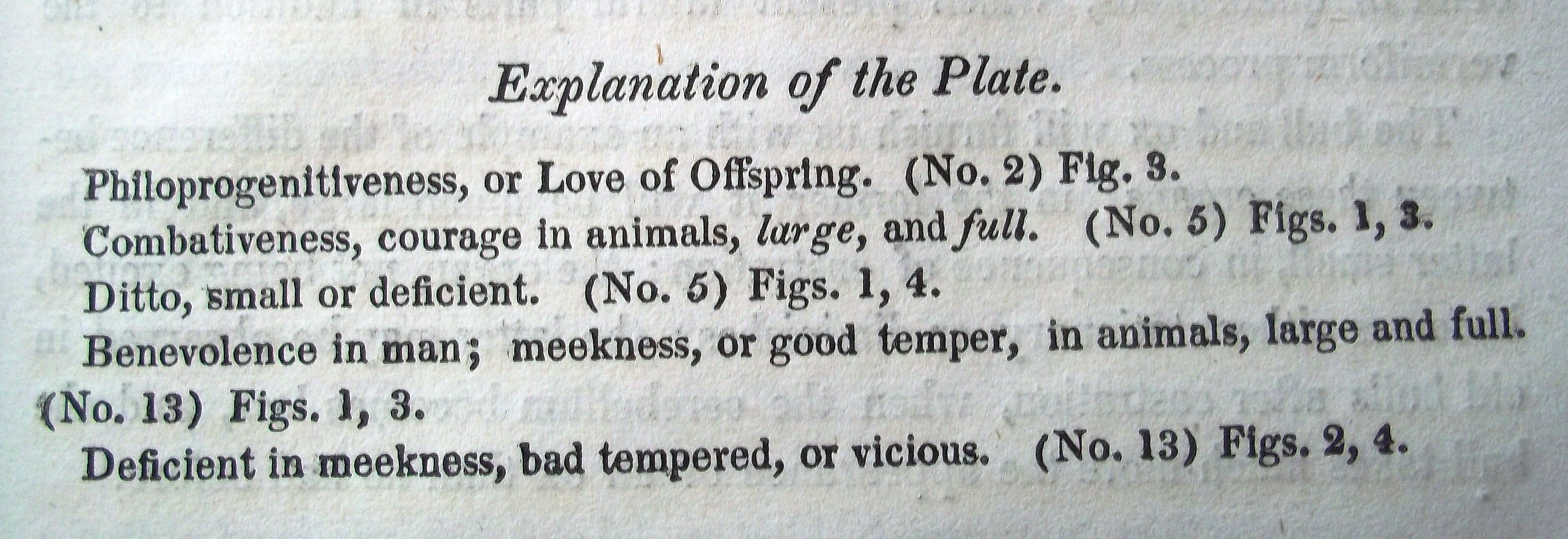 Explanation of plate
