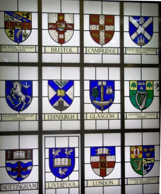 The RCVS stained glass | RCVSK Blog